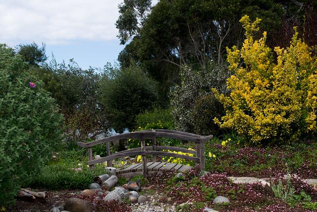 Carmelite Monastery Garden