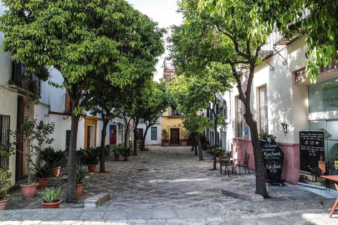 Barrio de Santa Cruz (Siviglia)
