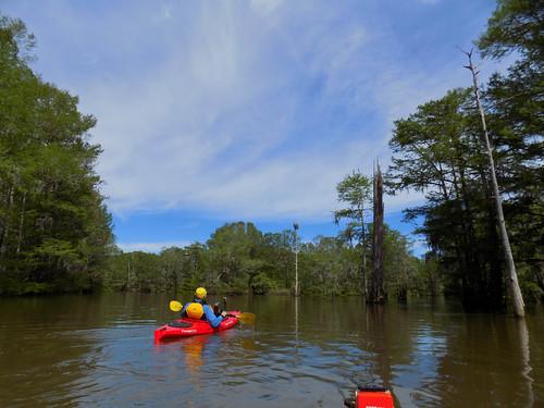 Sparkleberry Swamp with LCU