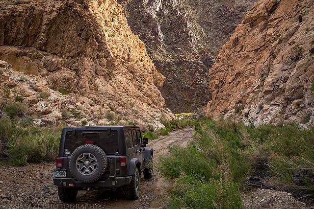 Canyon Drive