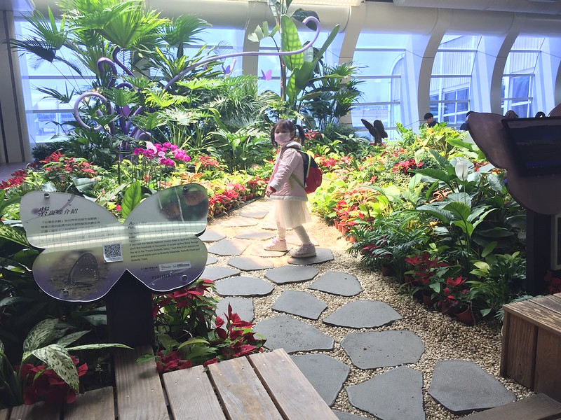 高雄 小港機場 令人驚豔的熱帶小花園