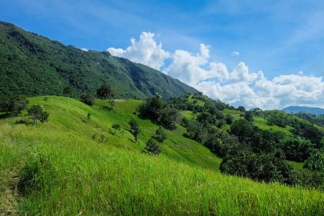 Mt Lanaya, Alegria, Cebu-3