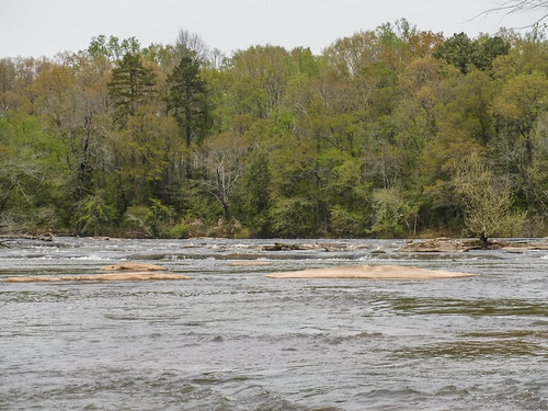 Saluda River at Pelzer-87