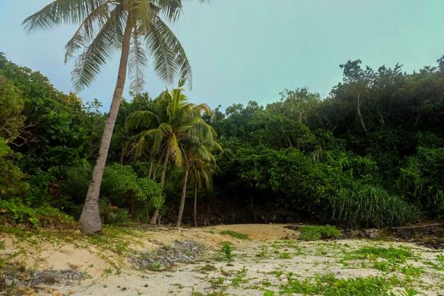 Carnaza Island (47)