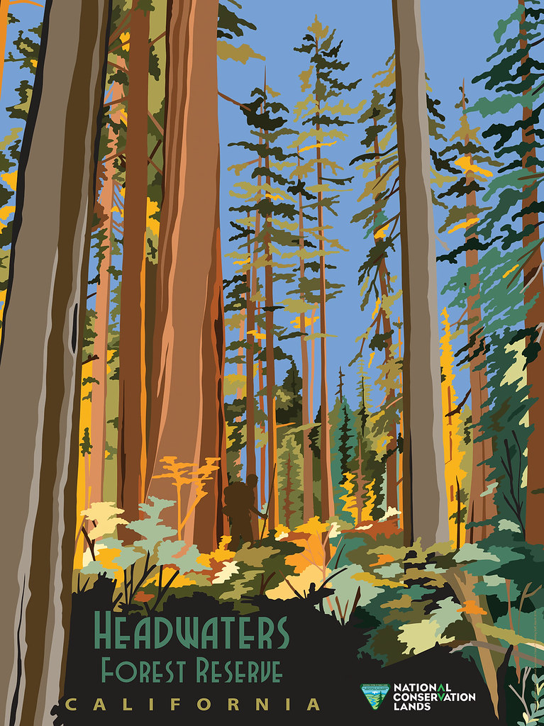 Headwaters Forest Reserve Poster Spectacular In Its Beau Flickr