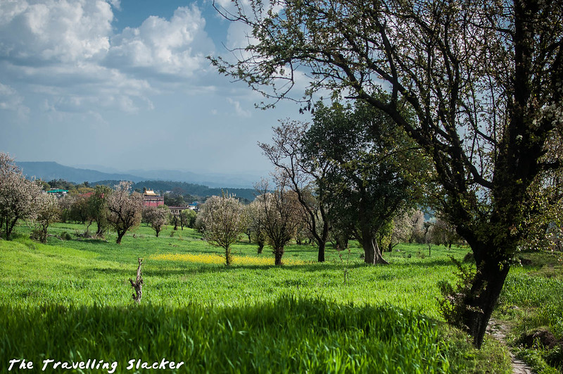 Sidhpur-Zen Valley (16)