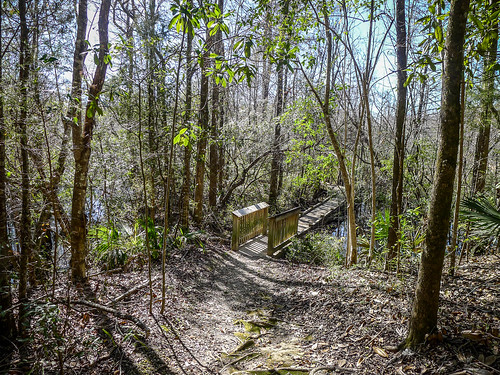 Old Santee Canal Park-84