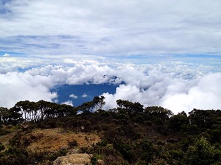 great view from the top of mount rantemario/latimojong in sulawesi
