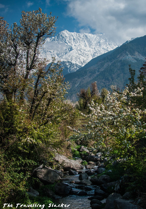 Sidhpur-Zen Valley (3)