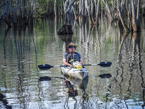 Sparkleberry Swamp-12