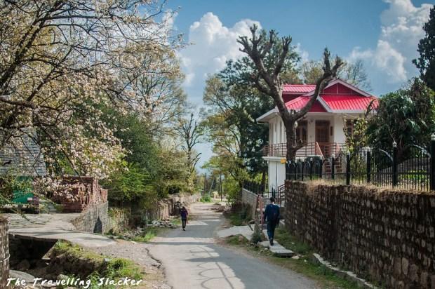 Sidhpur trek (30)