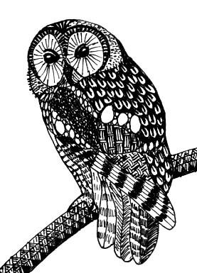 Zentangle Inspired Tawny Owl ATC My Original Plan Was To