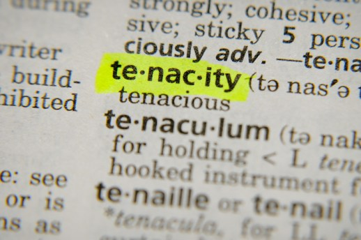 Image result for tenacity