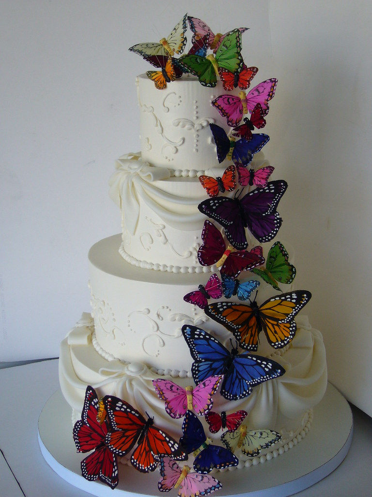 Butterfly wedding cake   AFTER   It went from a vision in wh      Flickr     Butterfly wedding cake   AFTER   by amber mckenney