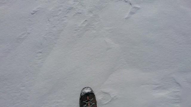 donmuş çıldır gölü üzerinde yürüyüş