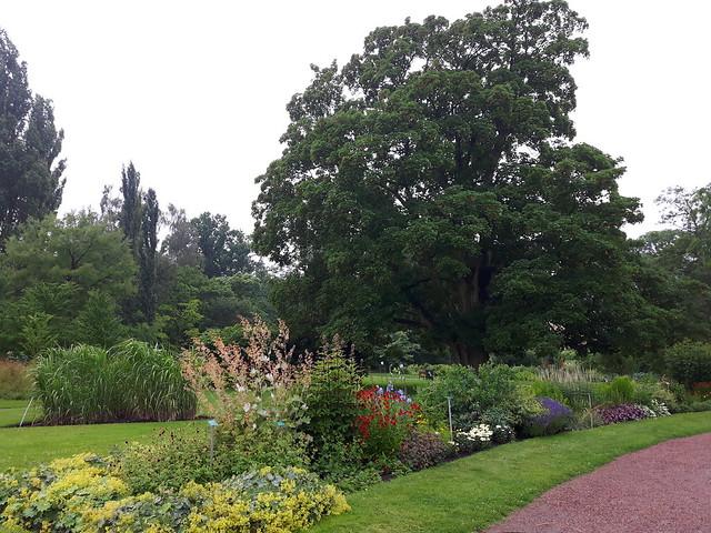 Botaniska tradgarden Lund (2)