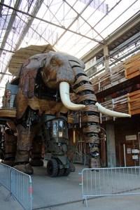 The Elephant awaits departure