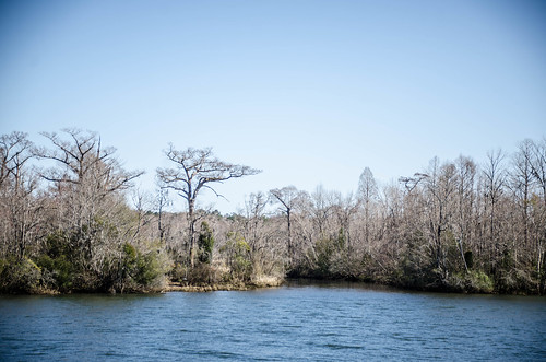Old Santee Canal Park-48