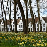 Travel: Belgium - Bruges: historical center