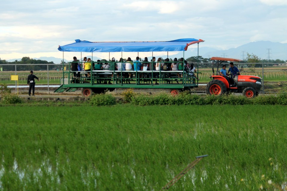 Philippine Rice Research Institure (PhilRice)