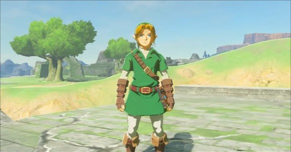 Legend of Zelda Breath of the Wild Classic Link Costume