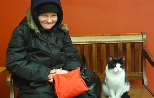 stary-cat-works-nursing-home-oreo-4