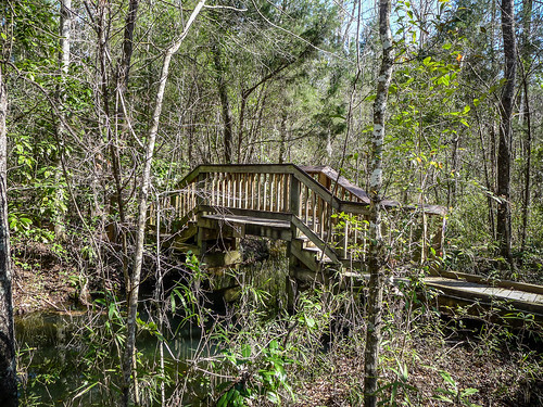 Old Santee Canal Park-109
