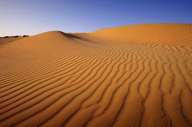 Kuwaiti Desert Kuwait City Arabic