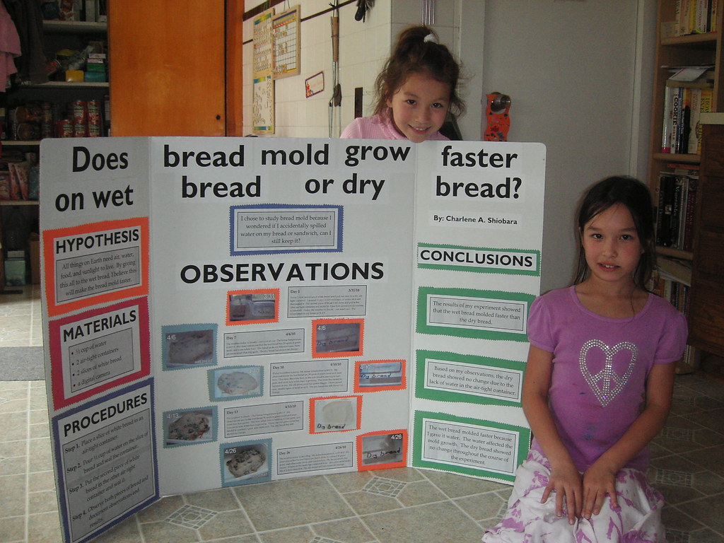 4th Grade Science Project Ideas