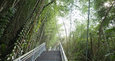信義鄉旅遊︱依希岸天時棧道.深山版的台北101、親近瀑布的必走步道