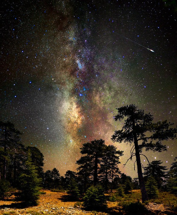 Deep space, deep in the forest | There are tons of photos ...