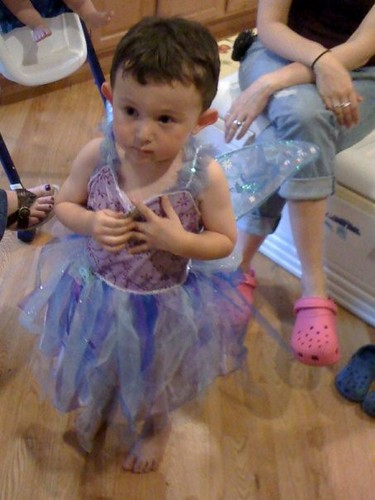 The Birthday Boy In His New Fairy Princess Costume Oak L