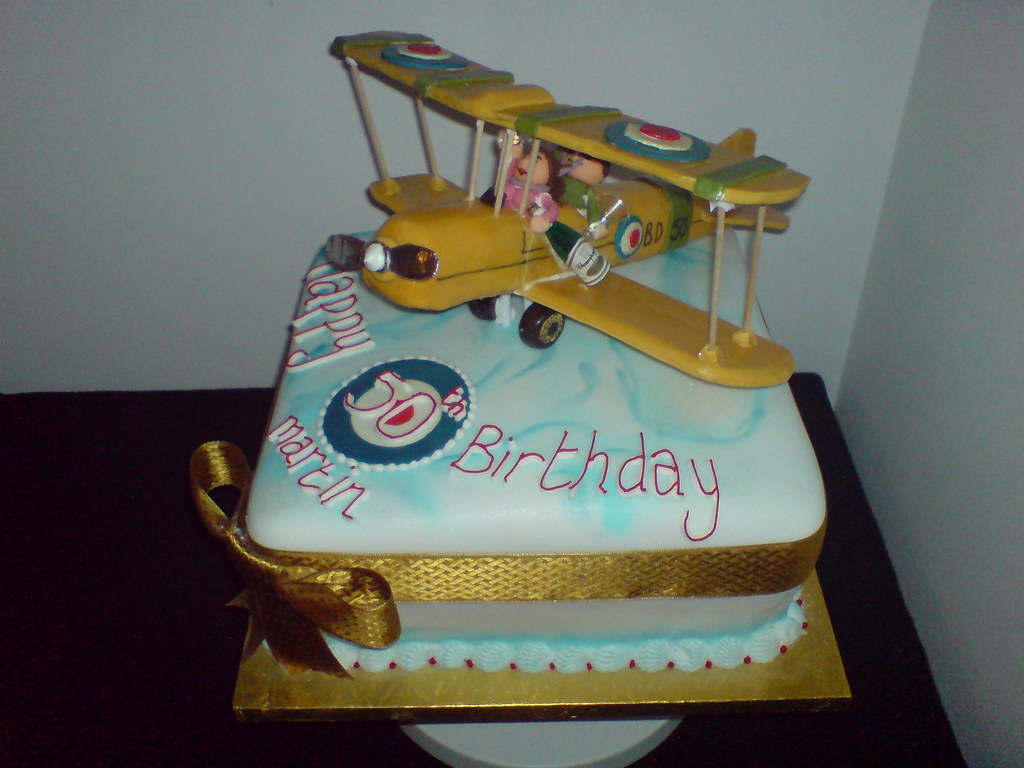 Bi Plane Model Cake Tiger Moth Front Right View