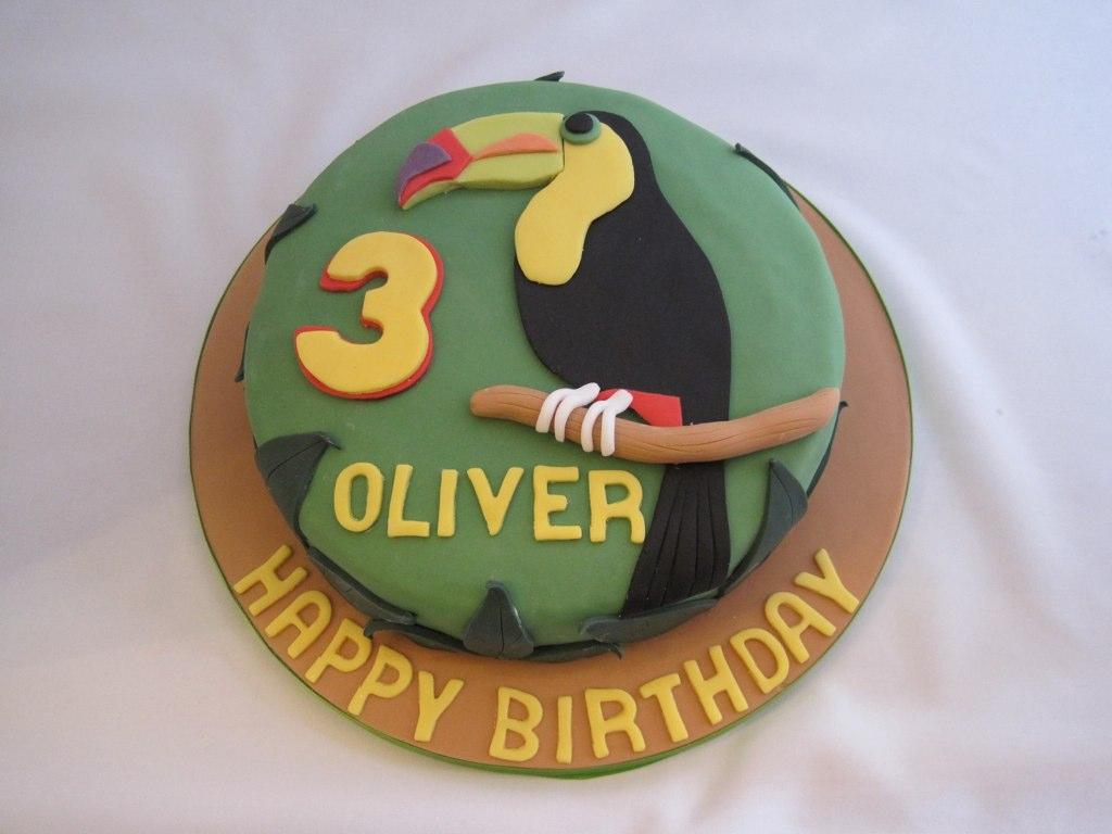 Toucan Cake Toucan Bird Birthday Cake Chocolate Sponge
