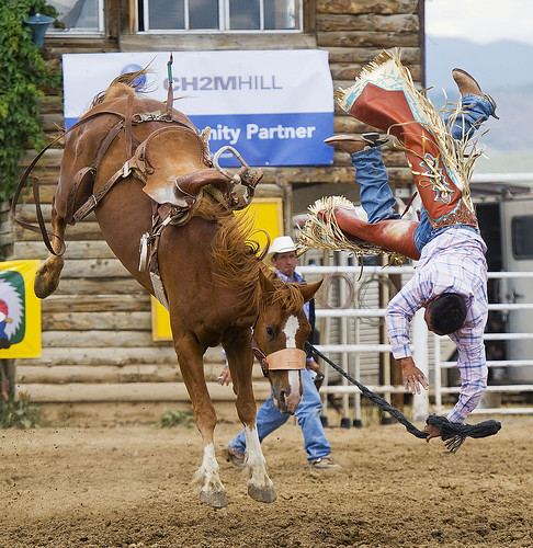 A saddle bronco rider is bucked off his horse at the annua ...