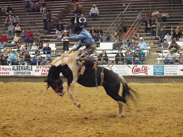 Pasadena Texas Professional Rodeo Cowboys Association PRCA ...