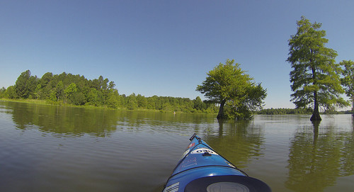 Old Santee Canal-69