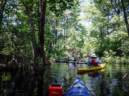 Old Santee Canal-154