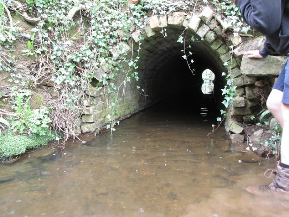Culvert under branch to Slapewath