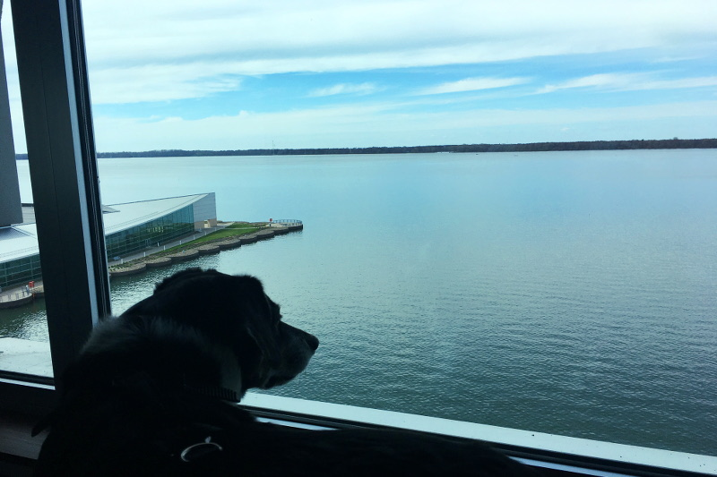 lake-erie-hotel-view-17