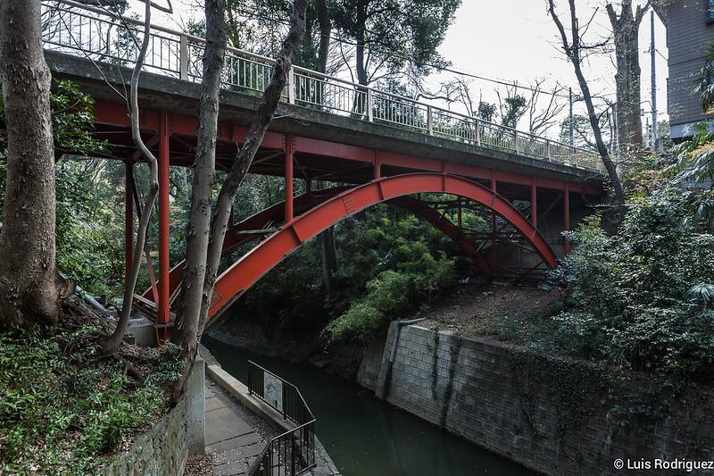 Valle-Todoroki-Tokio-6