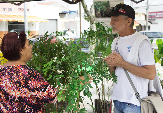 Faça como dona Carmem: plante uma muda e ajude o meio ambiente