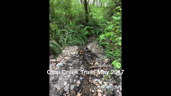 Coal Creek Trail _ May 2017