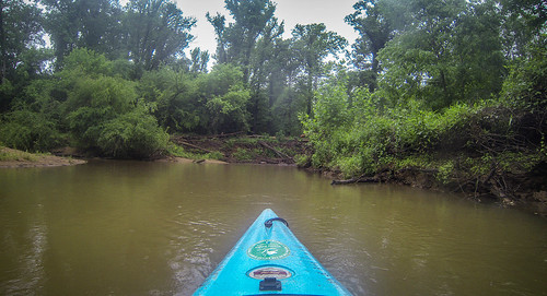 Long Cane Creek with Lowcountry Unfiltered-35