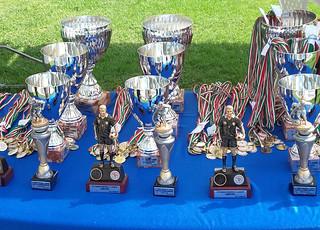 Trofeo Memorial Ligabue 2017