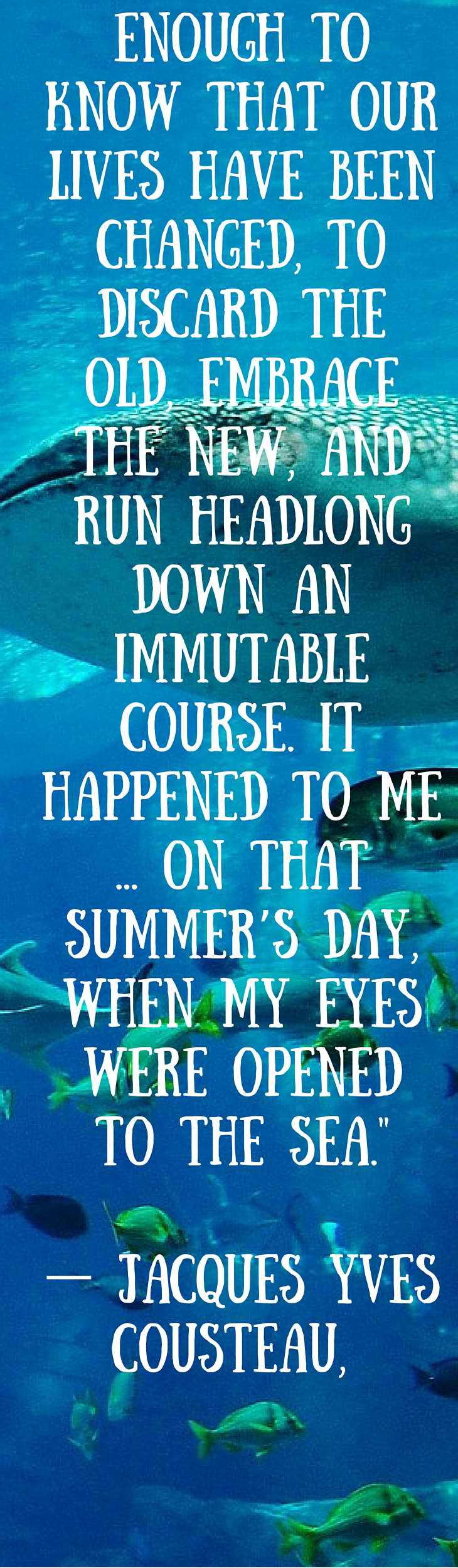 Our Favorite Ocean Quotes And Sayings Art Of Scuba Diving