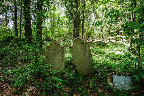 Old Stone Cemetery at Landsford Canal-033