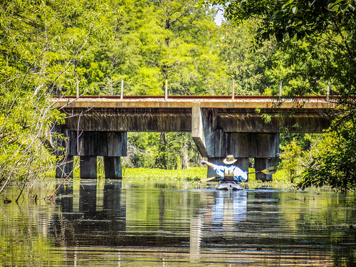 Old Santee Canal-47
