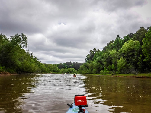 Long Cane Creek with Lowcountry Unfiltered-157