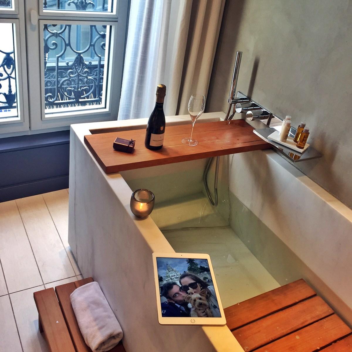 Viajar a Paris con Perro - Hotel de Nell Paris viajar a paris con perro Viajar a Paris con perro 34215581060 7b140ab74c h